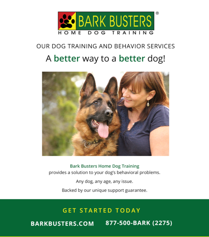 Bark Busters Washington, DC and Silver Spring<br>